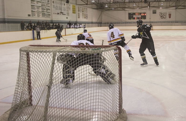 Calgary' ice hockey goal nets Netten