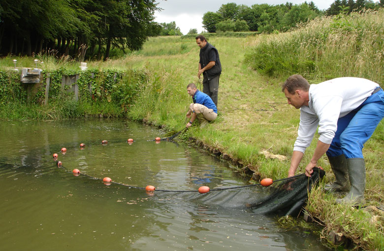 Pond drag nets Netten